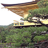 A Japanese pagoda roof, used with permission, Creative Commons